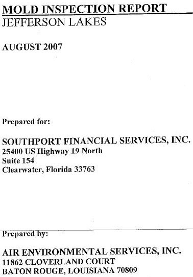 Mold Inspection Reports Katys Exposure - Mold removal invoice